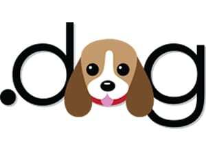 dominio dog